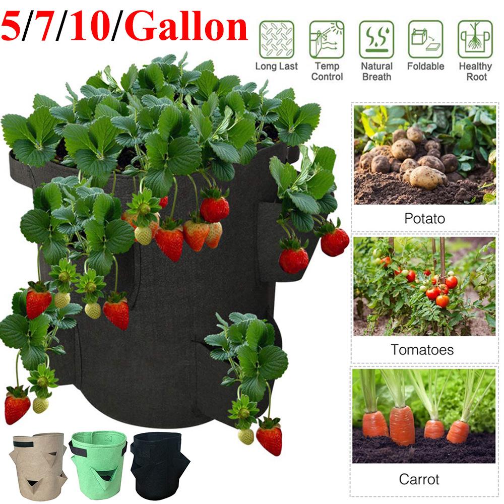 3 Gallon Garden Planting Grow Bag Potato Strawberry Planter Outdoor Vegetable