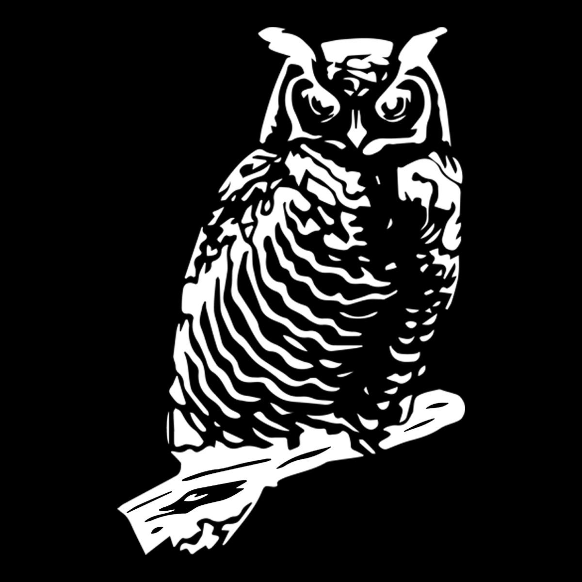 2x Owl Car Window Door Windscreen Laptop Bumper Animal