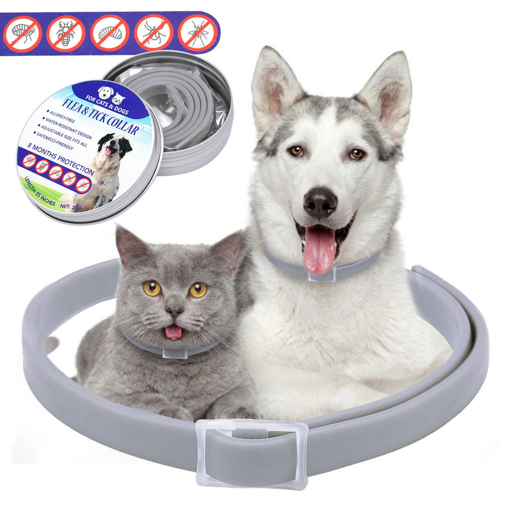 8 Month Flea And Tick Collar Protection Adjustable Fit